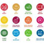 Your SDG's